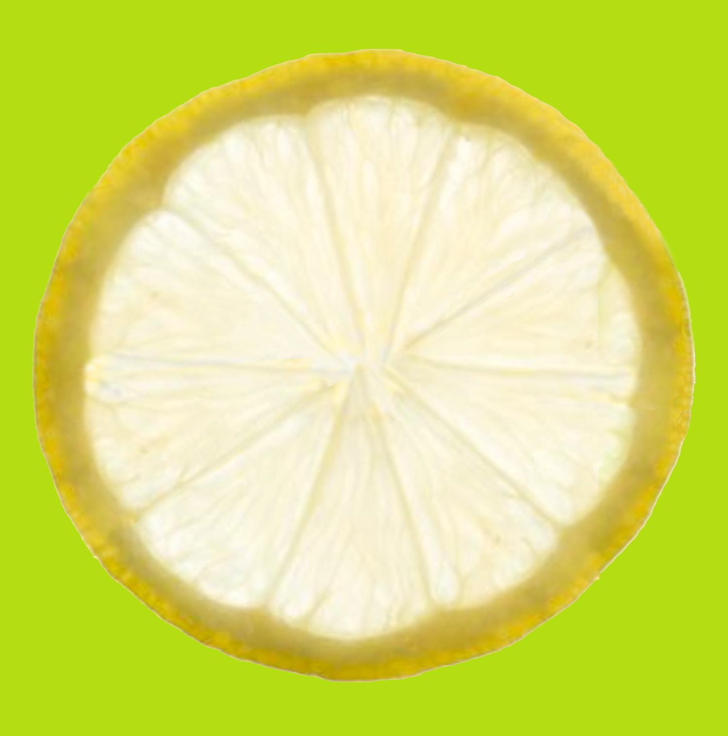 Lemon Slice-Square copy